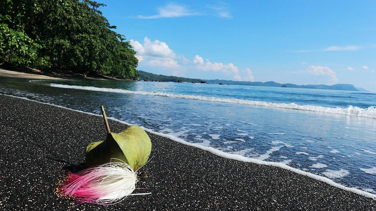 Pengembangan Sektor Wisata Dalam Peningkatan Lahan Pekerjaan  The